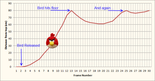 Motion of falling, bouncing bird